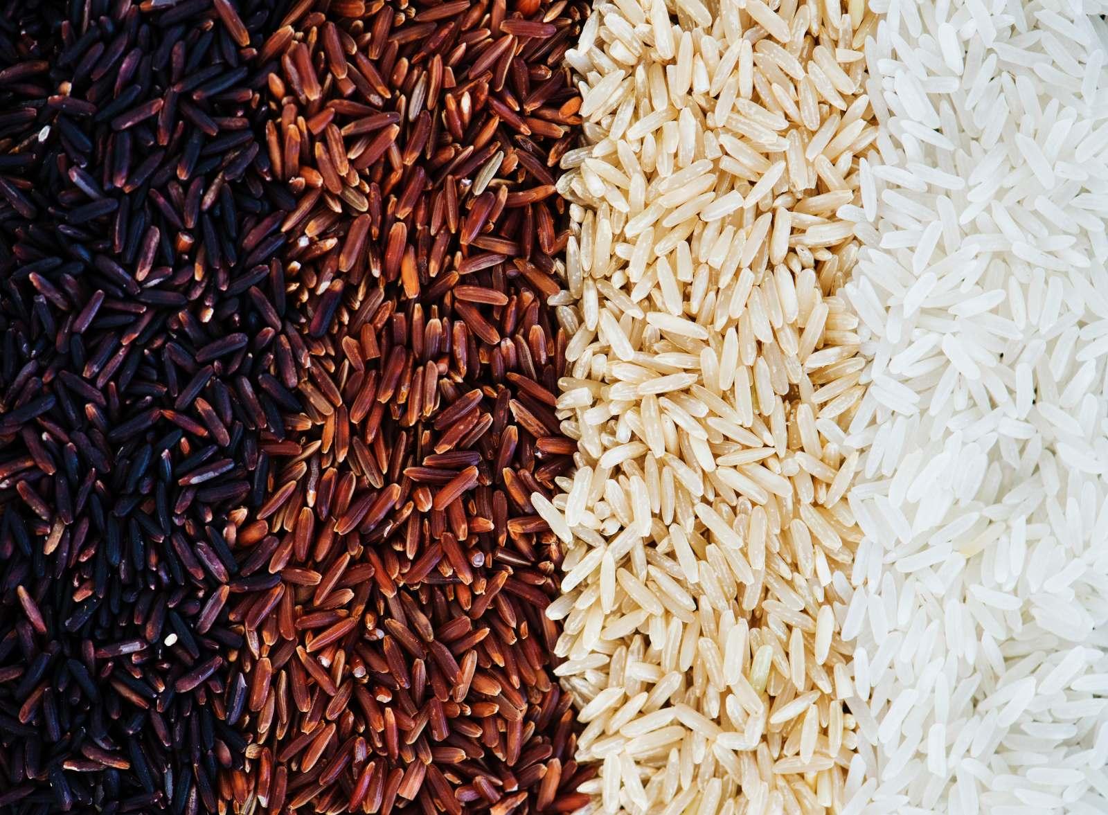 riso nero riso rosso risso integrale riso bianco