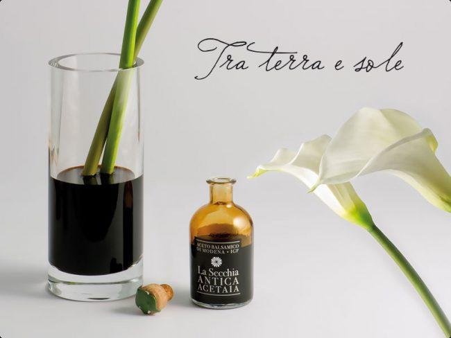 bottiglietta aceto balsamico di Modena de La Secchia Antica Acetaia