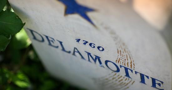 etichetta champagne delamotte